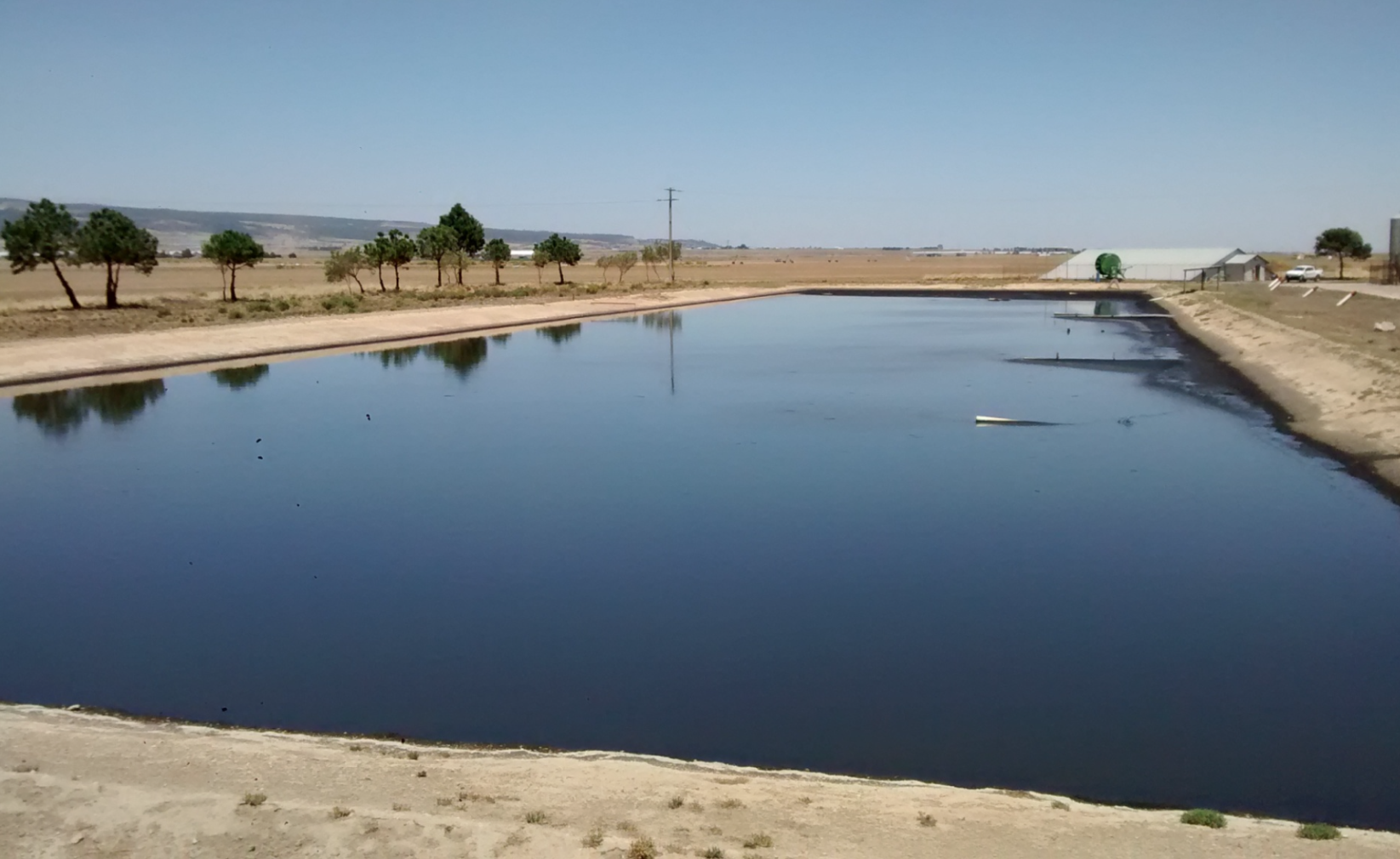 Solids Remediation in a CAFO Lagoon